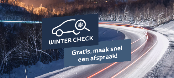 Gratis Winter Check